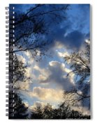 Whispers Of Winter Present Spiral Notebook