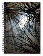 Whispy Winter Moonlight Spiral Notebook