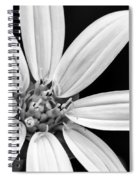 White And Black Flower Close Up Spiral Notebook
