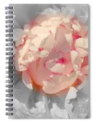 White And Pink Lace Spiral Notebook