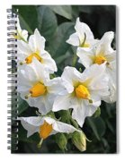 Garden Blossoms White And Yellow Garden Blossoms Spiral Notebook