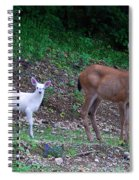 White Angel And Mom II Spiral Notebook