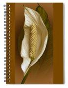 White Anthurium Flower Spiral Notebook