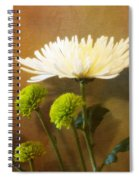 White Autumn Spiral Notebook