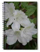 White Azalea 14-1 Spiral Notebook