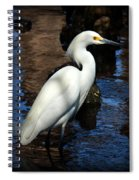 White Beauty Spiral Notebook