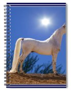 White Beauty Under The Moonlight Spiral Notebook