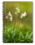 White Bells Spiral Notebook