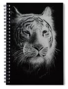 White Bengal Tiger Spiral Notebook
