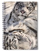 White Bengal Tigers, Forestry Farm Spiral Notebook