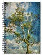 White Birch In May Spiral Notebook