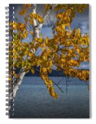 White Birch Tree In Autumn Along The Shore Of Crystal Lake Spiral Notebook