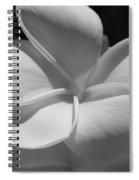 White Bloom B W Spiral Notebook