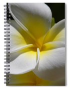 White Bloom Spiral Notebook