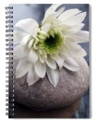 White Blossom On Rocks Spiral Notebook