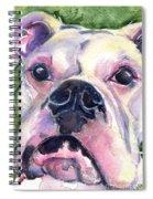 White Boxer Spiral Notebook