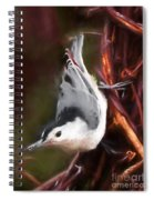 White-breasted Nuthatch - Classic Pose Spiral Notebook