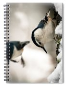 White Breasted Nuthatch In The Snow Spiral Notebook