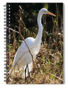 White Brilliance Of The Egret Spiral Notebook