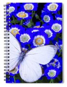 White Butterfly In Blue Flowers Spiral Notebook