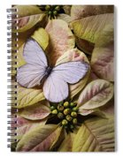 White Butterfly On Poinsettia Spiral Notebook
