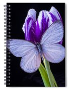 White Butterfly On Purple Tulip Spiral Notebook