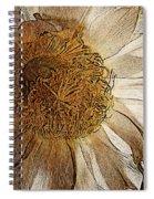 White Cactus Flower Gold Leaf Spiral Notebook