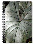 White Caladium Spiral Notebook