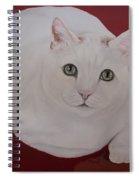 White Cat Spiral Notebook