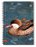 White-cheeked Pintail Spiral Notebook