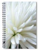White Chrysanthemum Spiral Notebook
