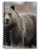 White Claws Spiral Notebook