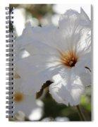 White Cordia Spiral Notebook