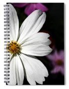 White Coreopsis Spiral Notebook