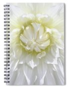 White Dahlia Floral Delight Spiral Notebook