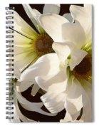 White Daisies In Sunshine Spiral Notebook