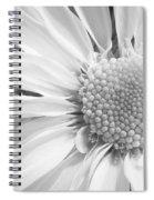 White Daisy Spiral Notebook