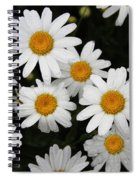 White Daisy's On The Rim Spiral Notebook