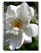 White Dog Rose Spiral Notebook