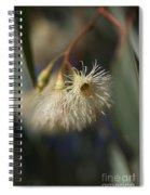 White Eucalyptus  Spiral Notebook