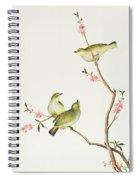 White Eye Bird Spiral Notebook