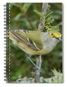 White-eyed Vireo Spiral Notebook