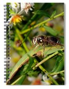 White Face Spiral Notebook