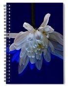 White Flower On Dark Blue Background Spiral Notebook