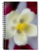 White Flower On Red Background Spiral Notebook