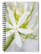 White Flower Spiral Notebook