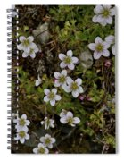 White Flowers And Moss Spiral Notebook