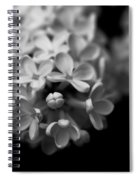 White Flowers In Black And White Spiral Notebook
