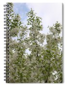 White Flowers On Branches Spiral Notebook