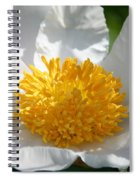 White Glove Spiral Notebook